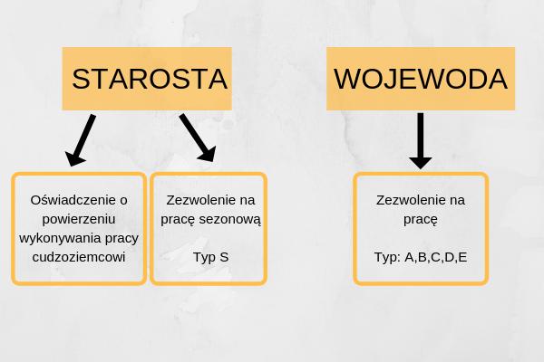 Procedura legalizacji pobytu cudzoziemców w Polsce